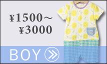男の子1500円から3000円